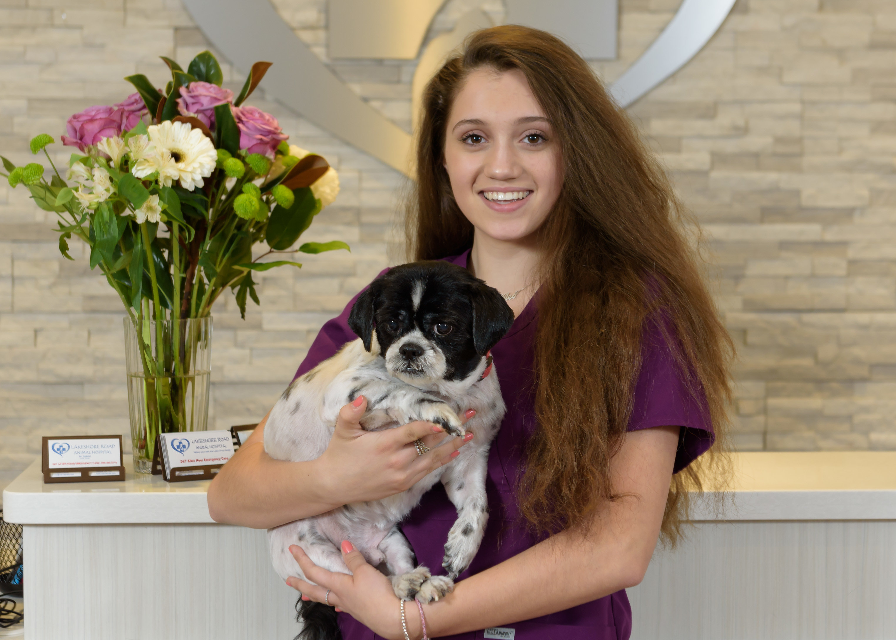 Burlington veterinary clinic burlington ks